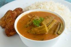 Języka nowoindoaryjskiego curry Obrazy Royalty Free