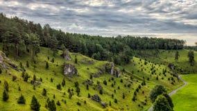 Jałowcowi skłony w Kleinziegenfeld dolinie w Niemcy Zdjęcia Royalty Free