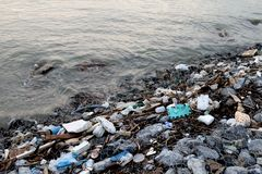 Jałowy nadmorski, śmieci na plażowym zanieczyszczeniu, Jałowy grat w rzece, odpad toksyczny, Wastewater, Brudzi wodę w rzece obraz stock