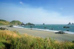 jałowy plażowy Oregon obraz stock