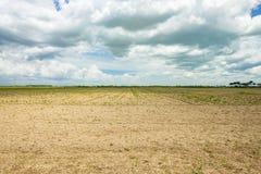 Jałowy rolnictwa pole fotografia royalty free