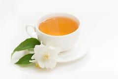 Jaśminów kwiaty i filiżanka zielona herbata na bielu Boczny widok i pojęcie Zdjęcia Royalty Free