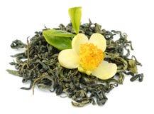 jaśminowa herbata zielona zdjęcie stock