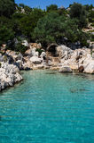 Jaśni błękitni śródziemnomorscy 3 Fotografia Stock
