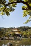 Jaśni niebieskie nieba przy Kinkaku-Ji świątynią otaczającą lasem obraz royalty free