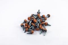 Jaźni musztrowania śruby Hex płuczka Fotografia Stock