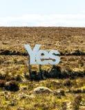 Ja in grote witte houten brieven met Schotse heide op de achtergrond Royalty-vrije Stock Foto