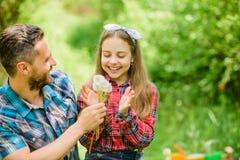 Ja jest m?j ?yciem c?rki i ojca mi?o?ci dandelion kwiat rodzinny lata gospodarstwo rolne ekologia Szcz??liwy rodzinny dzie? ma?a  obrazy stock
