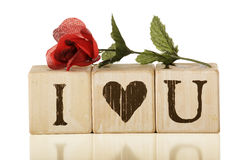 ja kocham ty różany Zdjęcia Royalty Free
