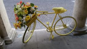 Ja låg cykel Arkivbild
