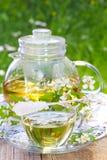 Jaśminowa herbata Zdjęcia Stock