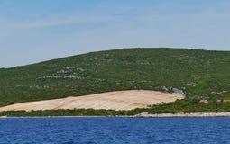 Jałowy Chorwacki drzewo oliwne sad Obraz Royalty Free