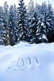 Jaar 2011 in het Landschap van de Winter Stock Afbeeldingen