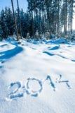 Jaar 2014 in het Bos van de Winter Stock Foto