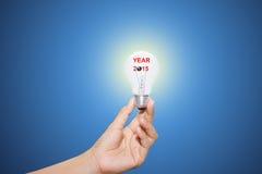 Jaar 2015 lightbulb Stock Foto's