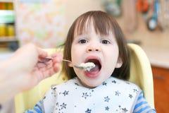 2 jaar weinig havermoutpap van de kindervoedingstarwe Stock Afbeeldingen