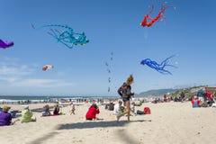 Jaarlijks Vliegerfestival in Lincoln City Oregon stock foto's