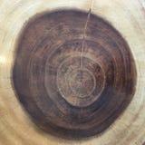Jaarringen van een boom van gezaagde boomboomstam Houten Textuur Als achtergrond royalty-vrije illustratie