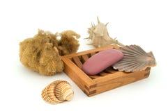 Jabón con la esponja y los shelles naturales. Fotografía de archivo libre de regalías