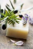Jabón con los ingredientes naturales Imagen de archivo libre de regalías