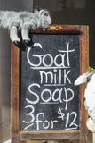 Jabón de la leche de la cabra Foto de archivo