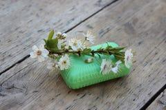 Jabón de retrete orgánico Fotografía de archivo