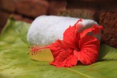 Jabón e hibisco Fotos de archivo