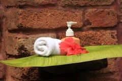 Jabón e hibisco Fotos de archivo libres de regalías