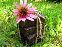 Jabón hecho a mano natural del alquitrán vendado con la secuencia en backgrou de la hierba Imágenes de archivo libres de regalías