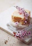 Jabón orgánico hecho a mano con la hierba de limón Imagenes de archivo