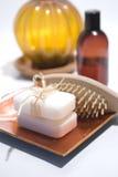 Jabón y accesorios Foto de archivo libre de regalías