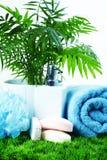 Jabón y toalla. Fotografía de archivo libre de regalías