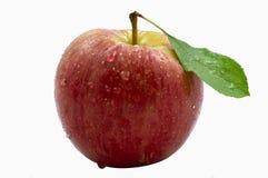jabłczana świeża jeden czerwień Zdjęcia Royalty Free