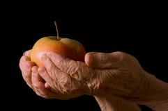 jabłczana czarny ręki stara kobieta fotografia royalty free