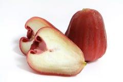 jabłczana czerwień wzrastał Zdjęcia Stock