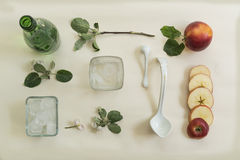 Jabłczana gałąź, kwiaty i rżnięty jabłko na białym tle, na widok Zdjęcia Royalty Free