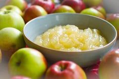 Jabłczana muza Od jesieni żniwa Fotografia Royalty Free