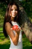 jabłczana piękna dziewczyny mienia czerwień Fotografia Stock