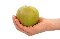 jabłczana ręka Obraz Royalty Free