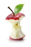 jabłczana wyśmienicie czerwień Obraz Royalty Free