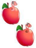jabłczane dżdżownicy Fotografia Royalty Free