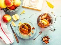 Jabłczanego cydru napój, gorący koktajl z cynamonowymi kijami i jabłko plasterki, pikantność herbaciane Jesień ranku pogodny wygo zdjęcia stock