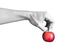 jabłczanego czarny ręki mienia czerwony biel Zdjęcie Stock