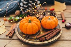 jabłczanego jesień świeczek składu susi liść target2422_0_ wazę Bania i cynamon obrazy royalty free