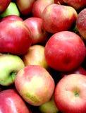 Jabłczanego tła różna czerwień fotografia stock