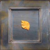 jabłczanej jesień piękny kwiecisty ramowy liść ornamentu obrazek Zdjęcie Royalty Free