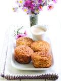 Jabłczani oatmeal muffins obrazy royalty free
