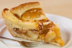jabłczany świeży kulebiak Zdjęcie Stock