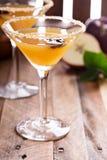 Jabłczany cydr Martini z gwiazdowym anyżem Obraz Royalty Free
