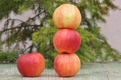 jabłczany czerwony smakowity fotografia royalty free